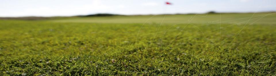Golfstore Banner Lemke